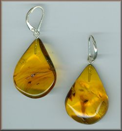 Baltic Amber Earrings Jewelry  with Fossil Inclusions