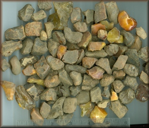 Baltic Rough Amber Collection